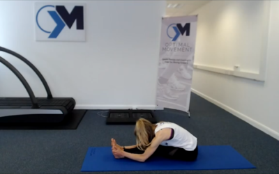 Flexibility for Injury Prevention and Performance 1