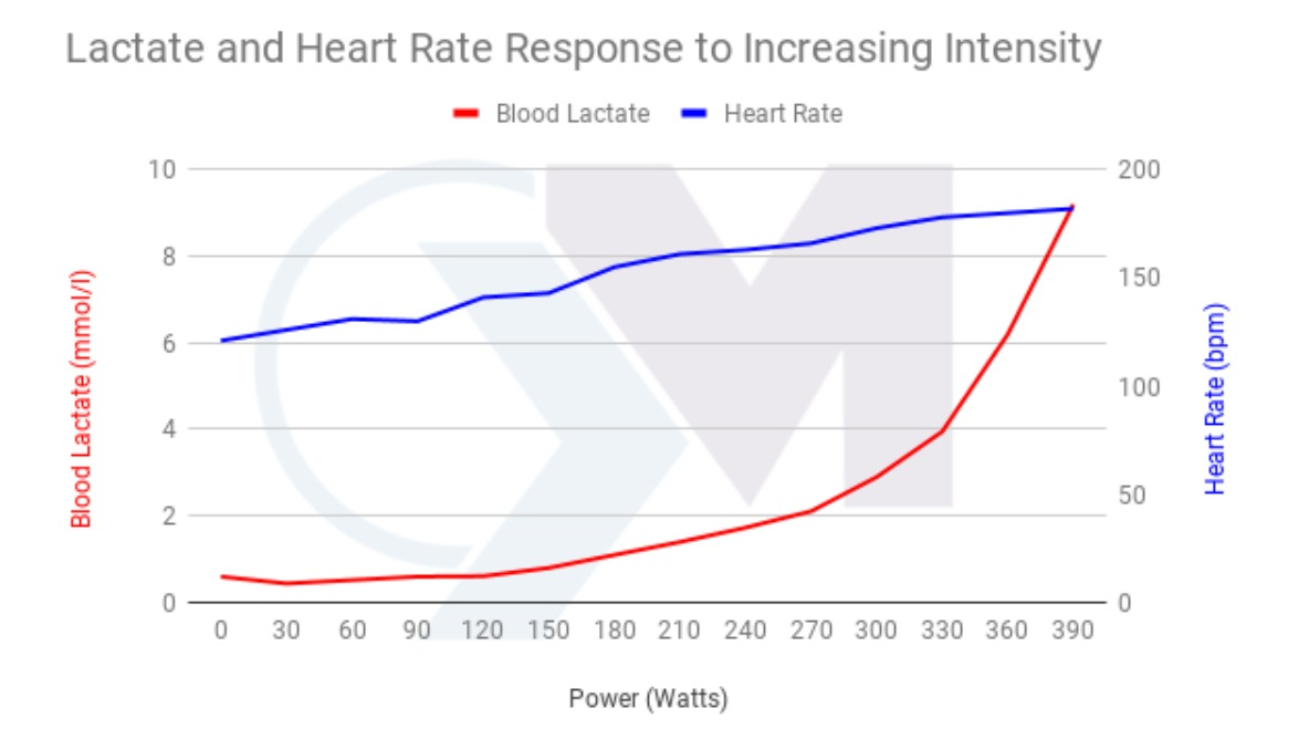Graph showing HR and lactate responding to intensity